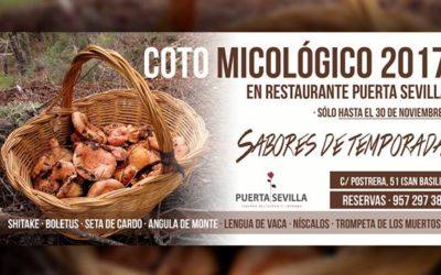 Coto micológico 2017 en Puerta Sevilla
