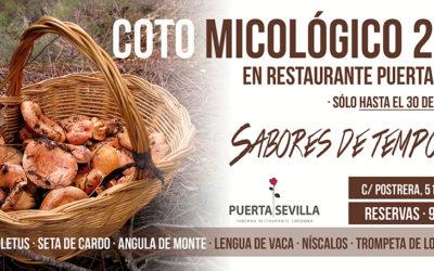 Coto micológico 2016 en Puerta Sevilla